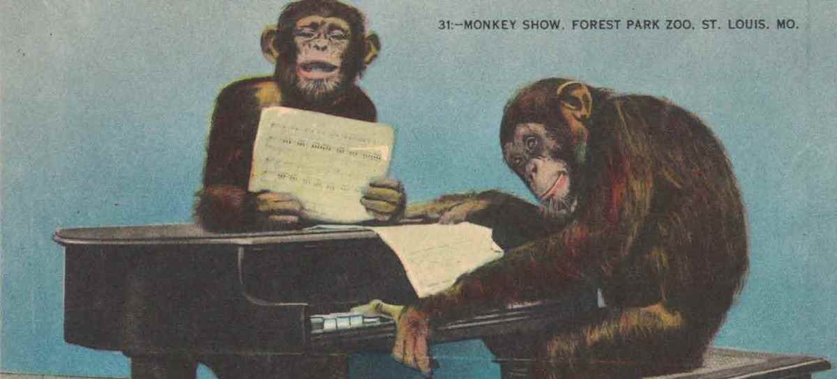 Postcards: Chimpanzees at the Zoo